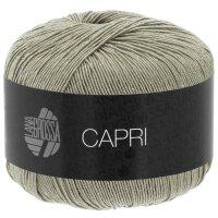 Capri Fb. 11 steingrau