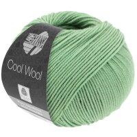 Cool Wool Fb. 2078 resedagrün