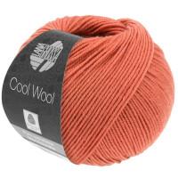 Cool Wool Fb. 2082 rost