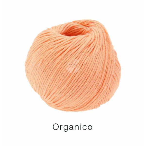 0122 apricot